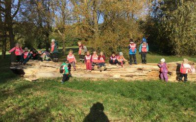 Utflykt till barnens skog