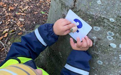 Utflykt med matematik i skogen
