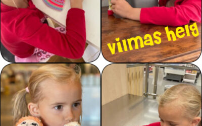 """Vilmas helg och """"Proffs på nät?"""""""